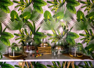 Create your own indoor garden